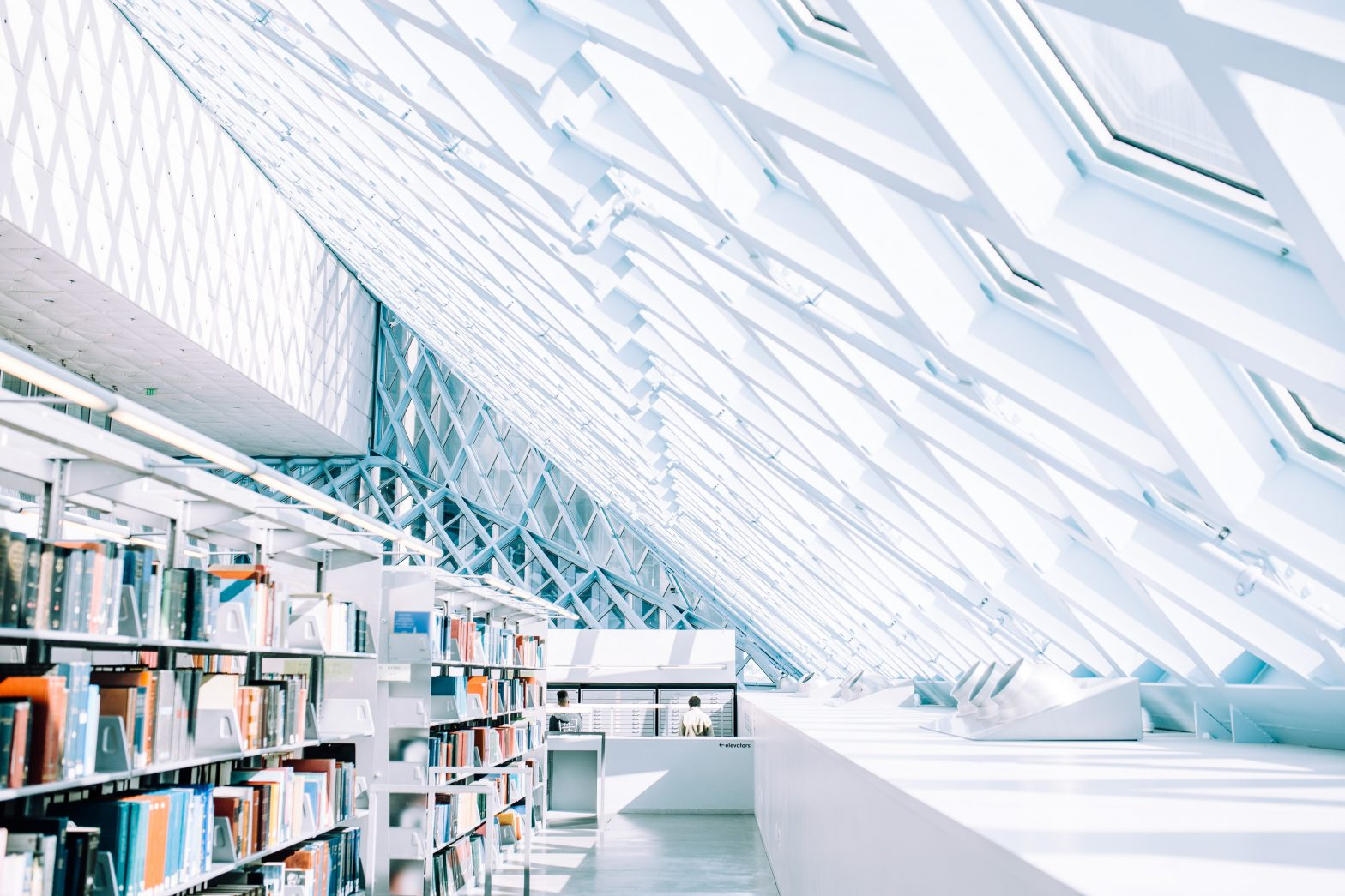 Neue Bücher: Online und Buchhandlung